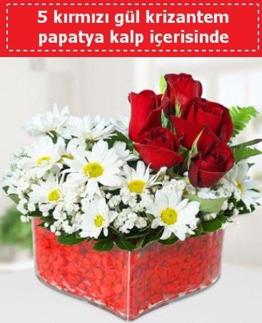 mika kalp içerisinde 5 kırmızı gül papatya  Ağrı çiçek gönderme