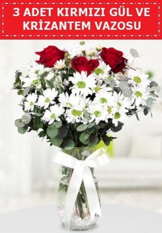 3 kırmızı gül ve camda krizantem çiçekleri  Ağrı çiçek gönderme